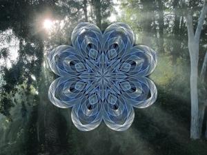 Forest Mandala.A
