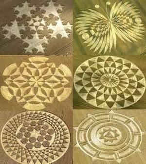 [Image: crop-circles.jpg]