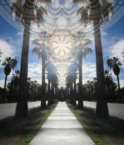 Ascension copy